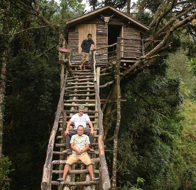 rootsandleisure_cloudline_treehouse