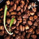 rootsandleisure_silkworm_recipe