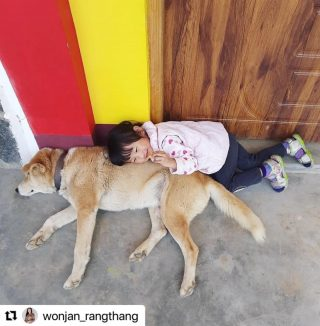 #Giveaway with @craate.in and @rootsandleisure   Entry # 13 by @wonjan_rangthang   #Repost @wonjan_rangthang with @make_repost ・・・ Finding Bliss.... I choose to put up this picture I clicked of my daughter cuddling the dog during a visit to her granny in the month of march 2020. This very picture depicts comfort, love, attachment all snuggled up closely. This moment of theirs is a perfect bliss and have taught me to find bliss admist the chaos and to be closely knitted with each other to find comfort, love & support which we all need. @rootsandleisure  @craate.in
